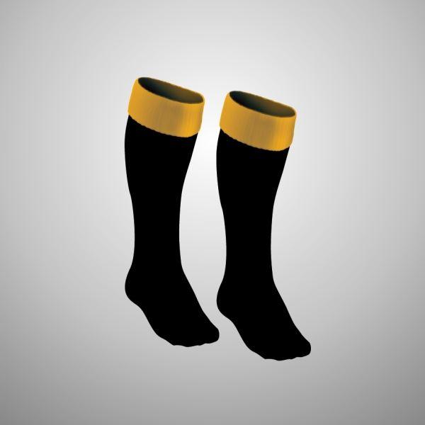 0009029_annan-athletic-fc-seniors-performance-socks.jpeg