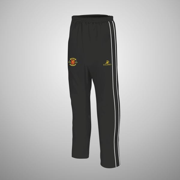 0009033_annan-athletic-fc-seniors-champion-tracksuit-bottoms.jpeg