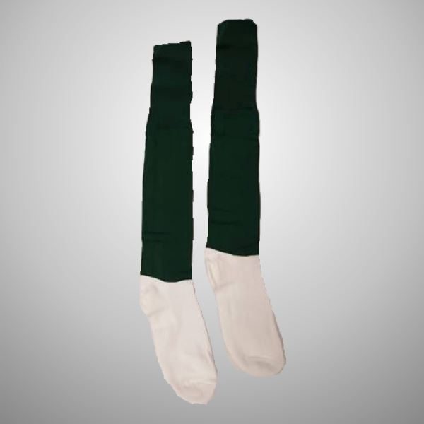 0002529_cushion-foot-sock-100.jpeg