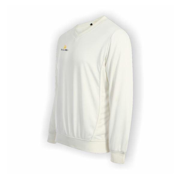0007047_long-sleeve-cricket-jumper.jpeg