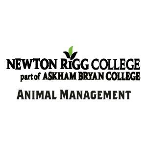 Animal Management