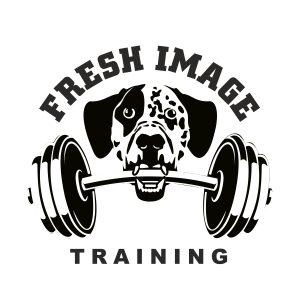 Fresh Image Training